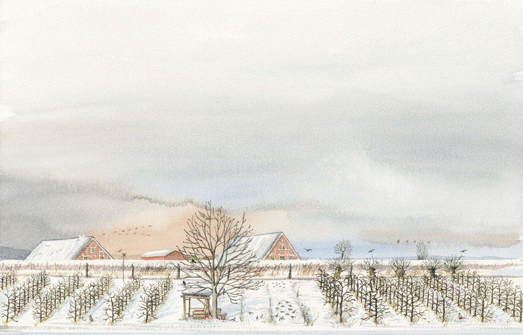 Schittek-Winter.jpg